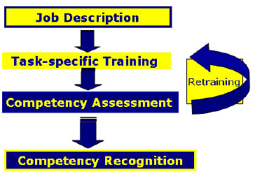 what is the most important competence Critical success behaviors we have already conducted over 5,000 competency -focused what are the three to five most important things the.